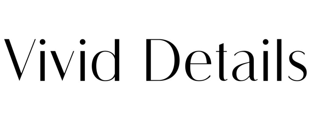 Vivd Details logo